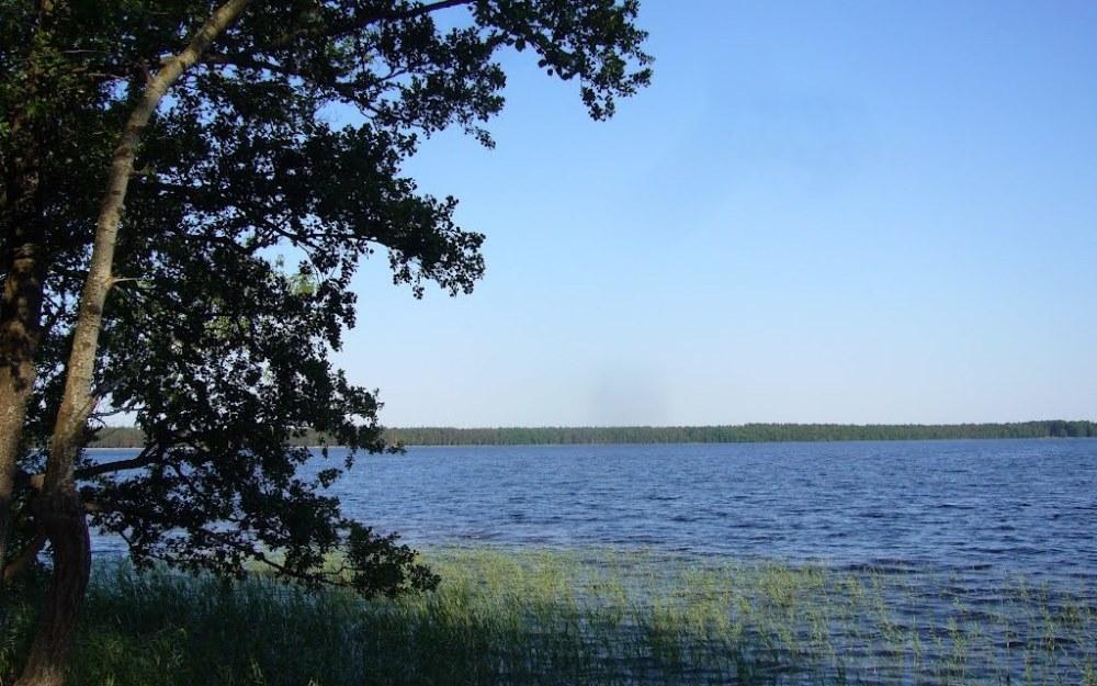 белое озеро ровненская область